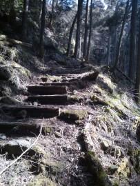 Des escaliers facilitent la marche. En plus, c'est beau.