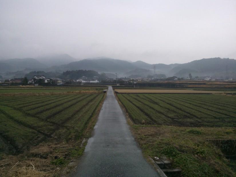 Vue sur Tagawa