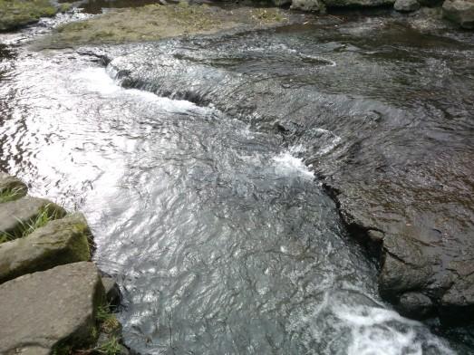 L'eau était pure.