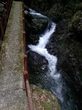 Parfois, l'eau serpentait avec force et rapidité.