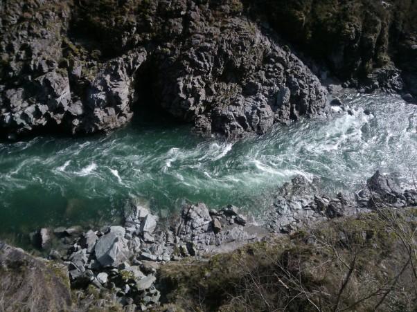 L'eau de la rivière était d'un vert émeraude.