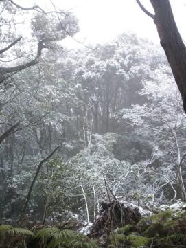 Paysages enneigés sur les monts Matsuo.