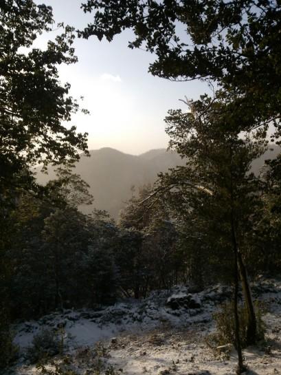 Montagnes à l'aube. Happiness ! 😃