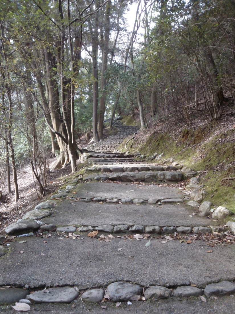 Marche vers les collines