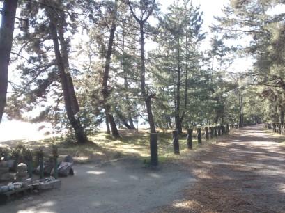 Sentier principal sur le bras de terre.