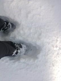 J'ai de la neige jusqu'aux genoux, et parfois même jusqu'à la hanche…