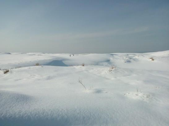 Neige sur les dunes.
